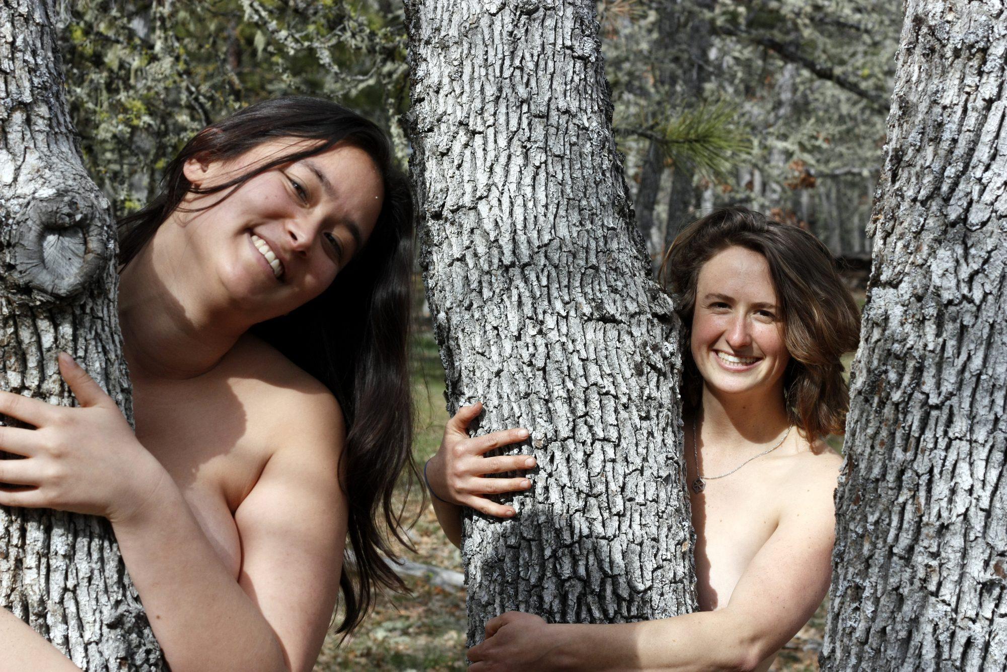 audrey_lindsay_tree_small
